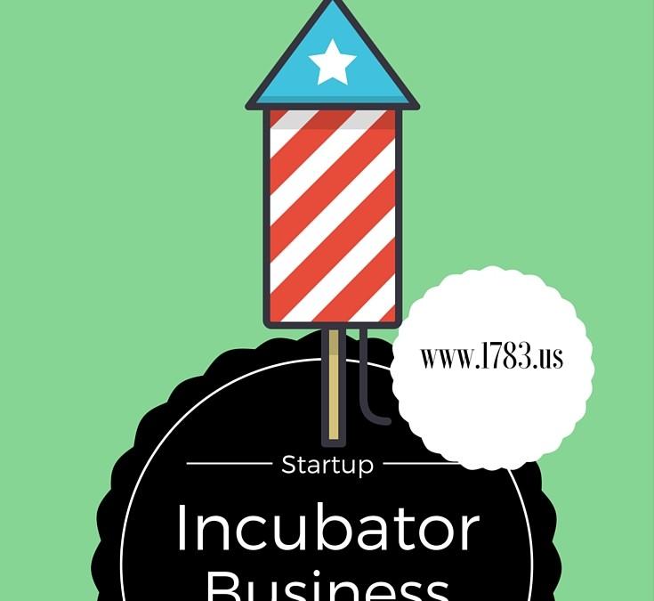 Business Incubators and Accelerators